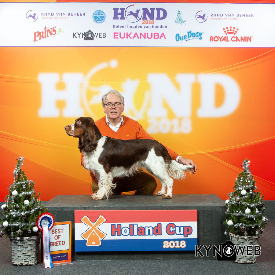 Holland Cup 2018